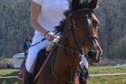 Tiara 2012-14