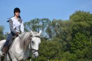 Wendy 2012-15