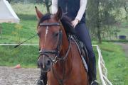 Tiara 2008-11