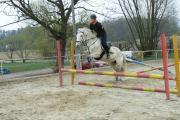 hop a hop