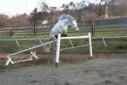 skok ve volnosti kolem 160 cm