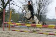 takto vypadám jako kůň z cirkusu